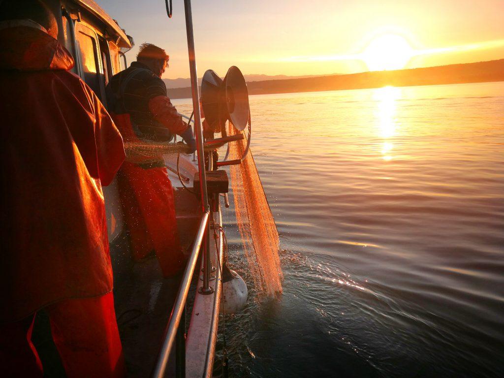 Ribarenje u Poratu - Naš gurmanski riblji restoran nudi svježe ulovljene morske plodove iz Jadranskog mora