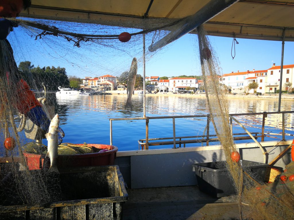 Gourmet Premium Seafood Restaurant - Fishing and extracting fishes from the nets
