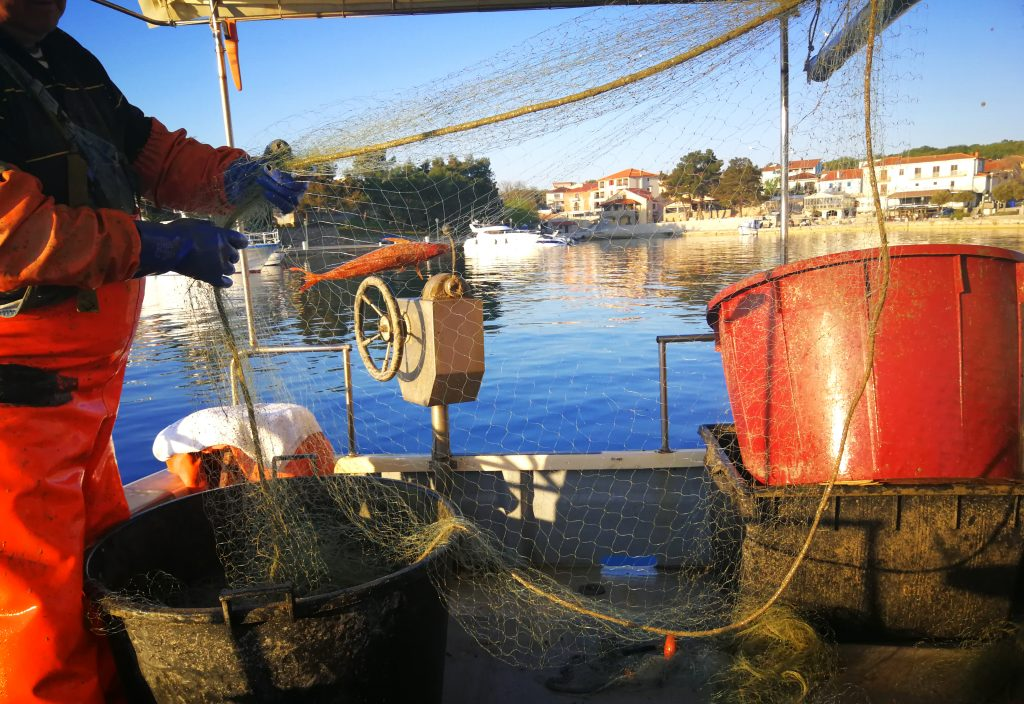Vađenje riba Trlja iz ribarskih mreža - Naš gurmanski riblji restoran nudi svježe ulovljene morske plodove iz Jadranskog mora